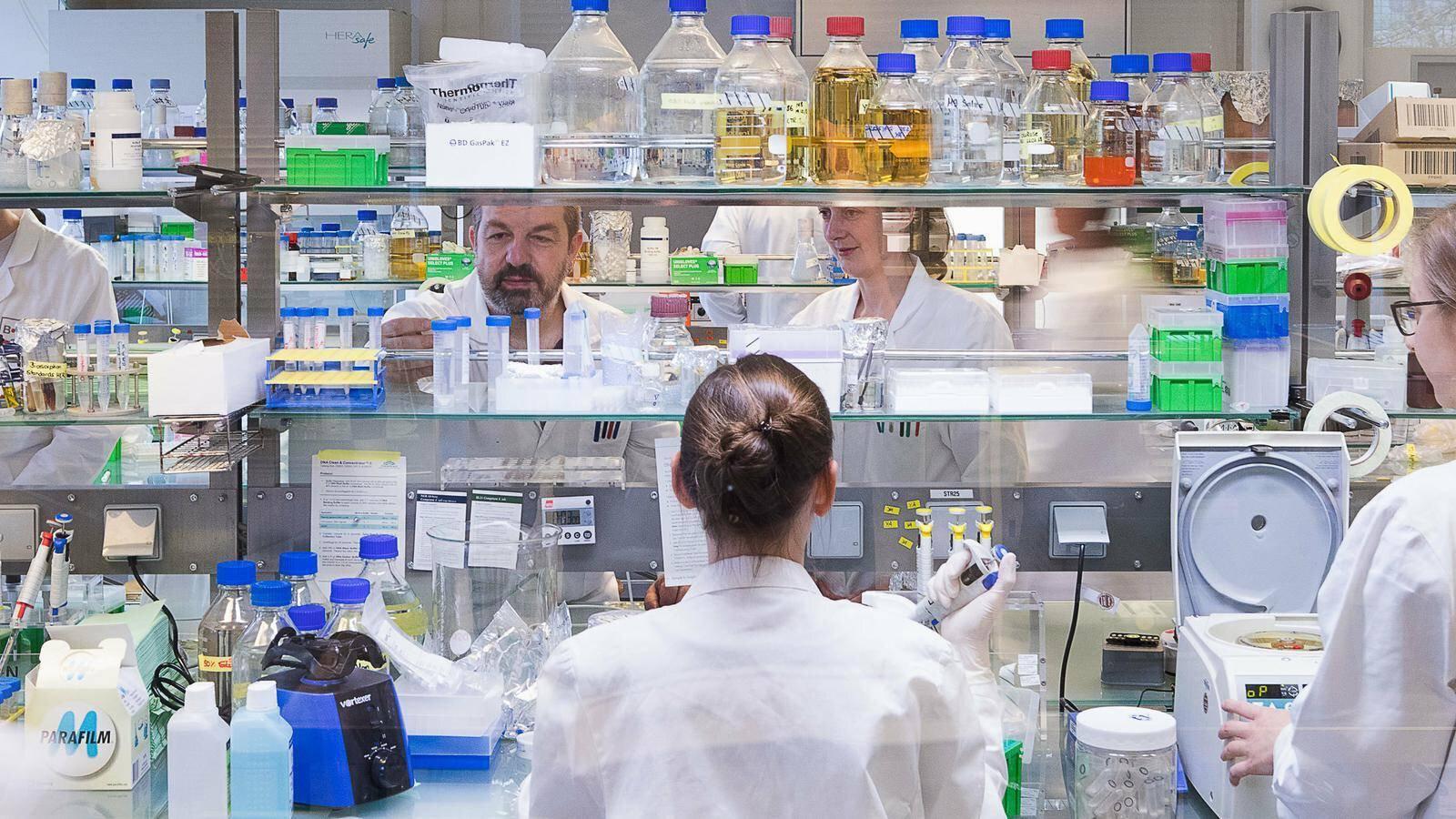 Gallery image 1 - BRAIN Molecular Biology Laboratory