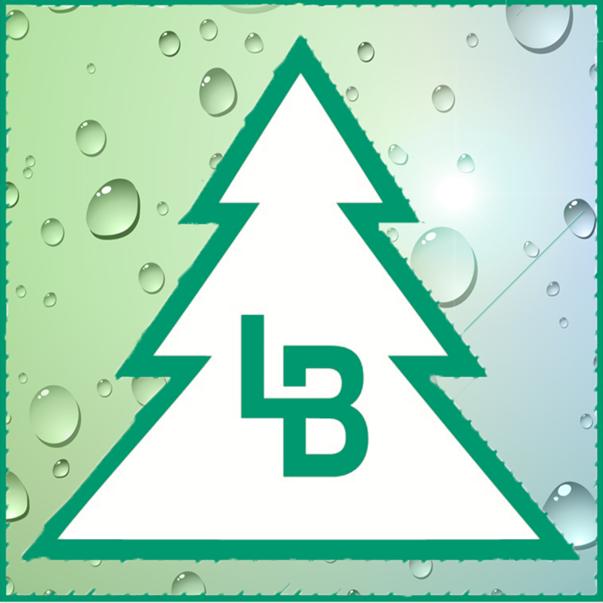 Company logo of Bürsten-Baumgartner Ludwig und Rosa Baumgartner OHG